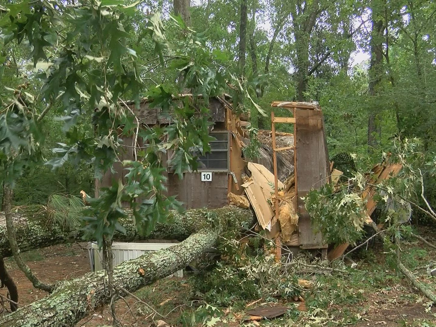 Tree falls on home and power lines down in Warren County neighborhood