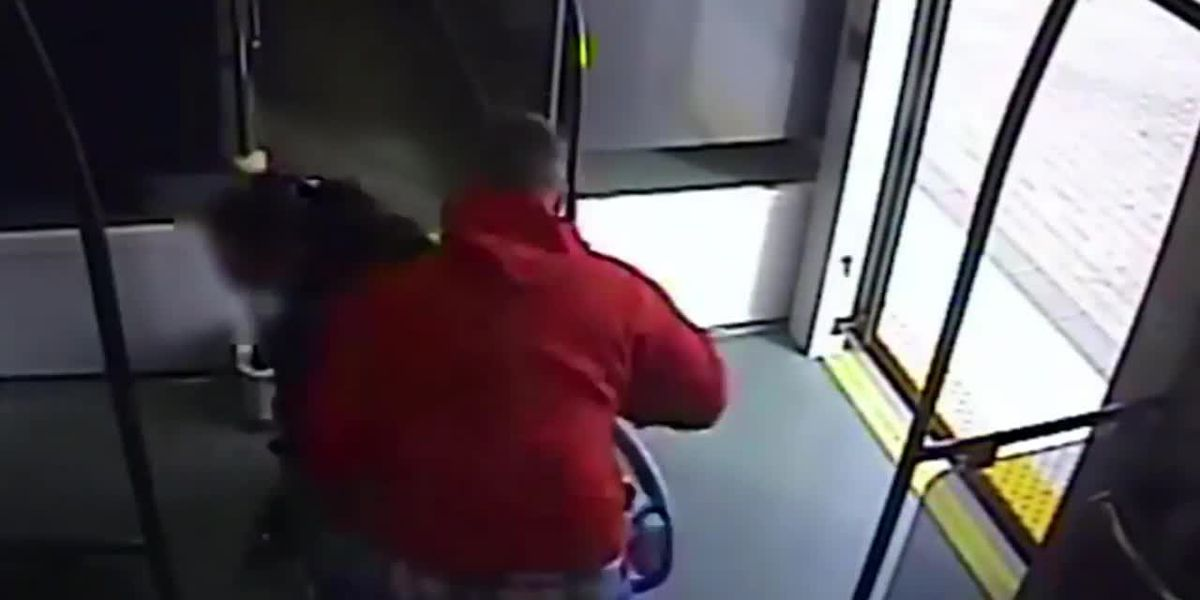 Video: Man appears to dump woman out of wheelchair trying to take it
