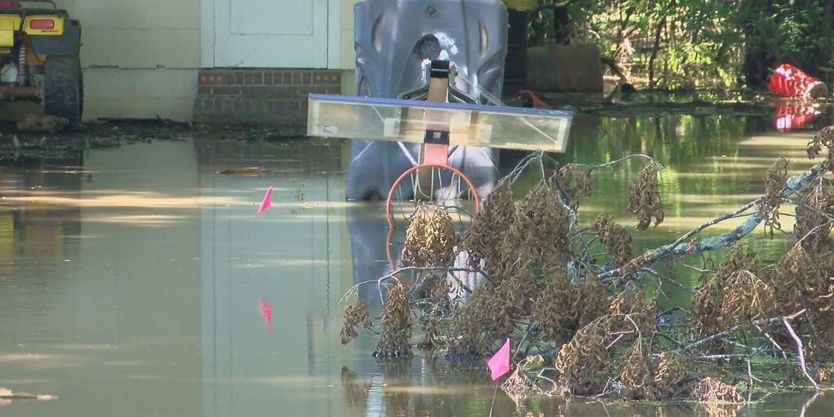 Holly Bluff residents pushing for Yazoo pumps to relieve backwater flooding
