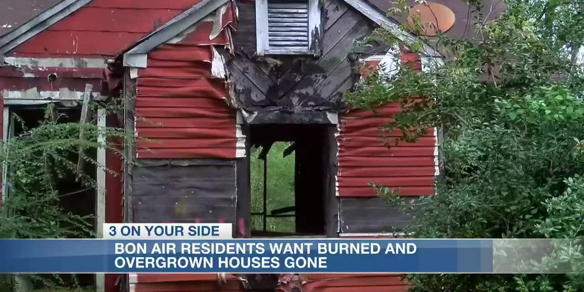 Jackson homeowners want several burned and overgrown houses gone