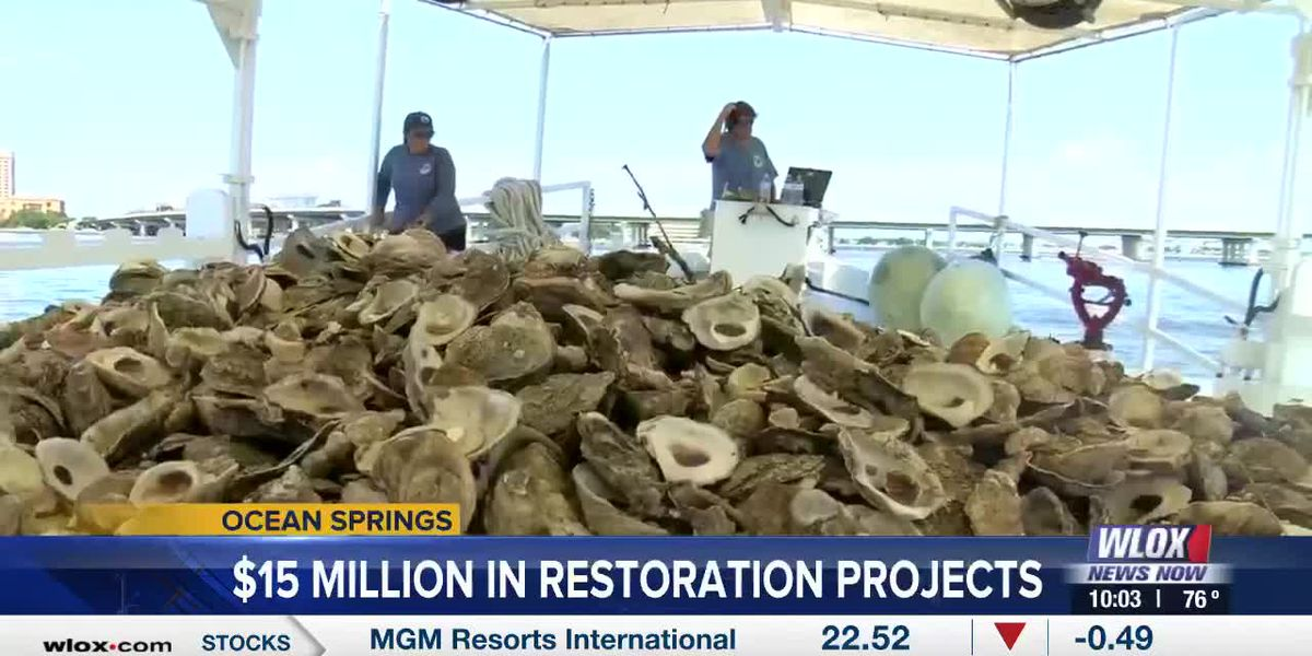 $10 million allocated for oyster restoration across the Mississippi Gulf Coast
