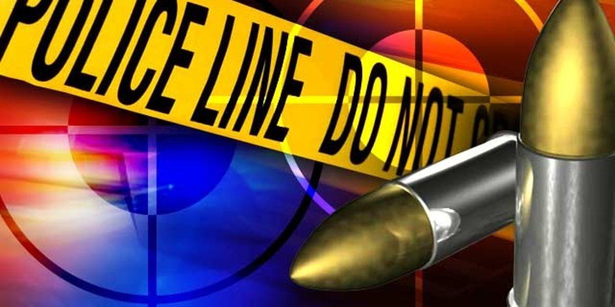 Two injured in shooting on Jayne Avenue in west Jackson