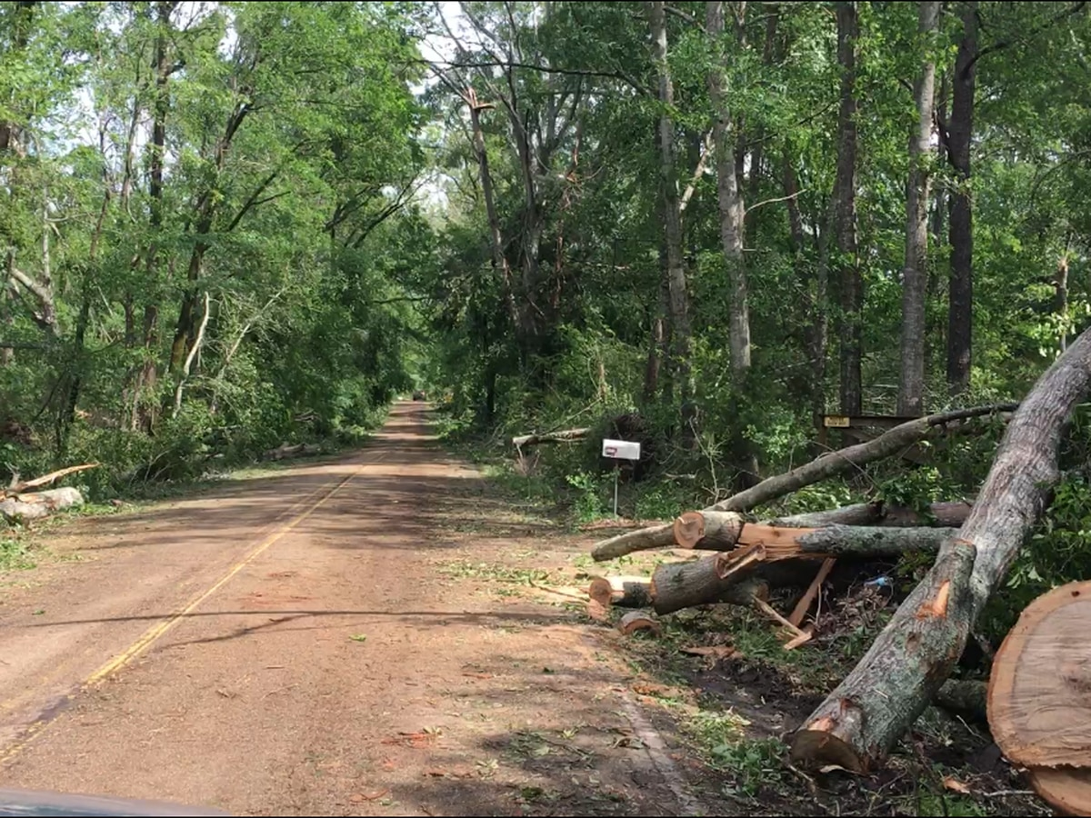 Learned residents begin cleanup after recent storms