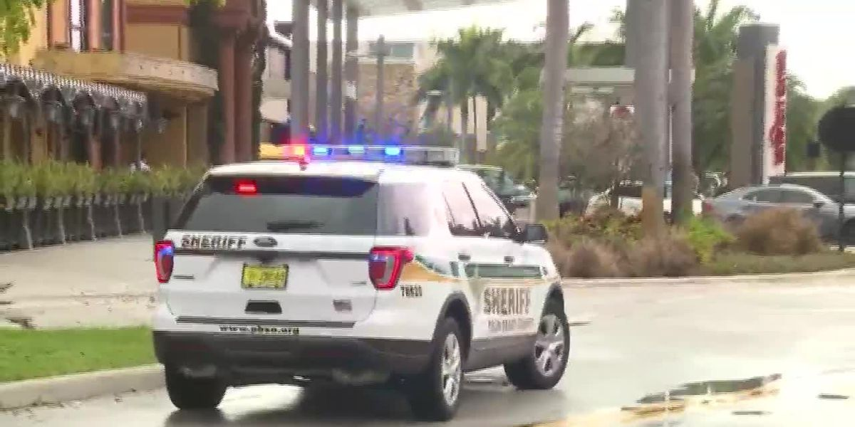 Person shot at south Florida mall
