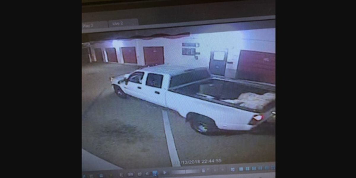 Pearl police searching for a box trailer thief