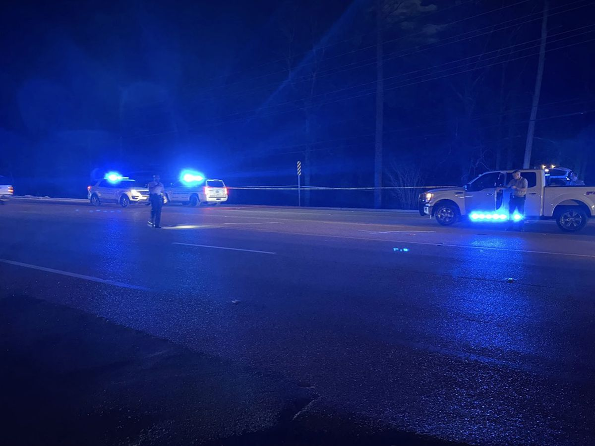 Woman killed in hit-and-run on Old Fannin Road