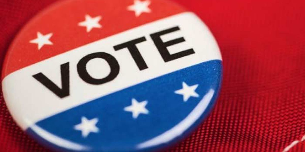 It's almost here: 8 municipal primary election day reminders