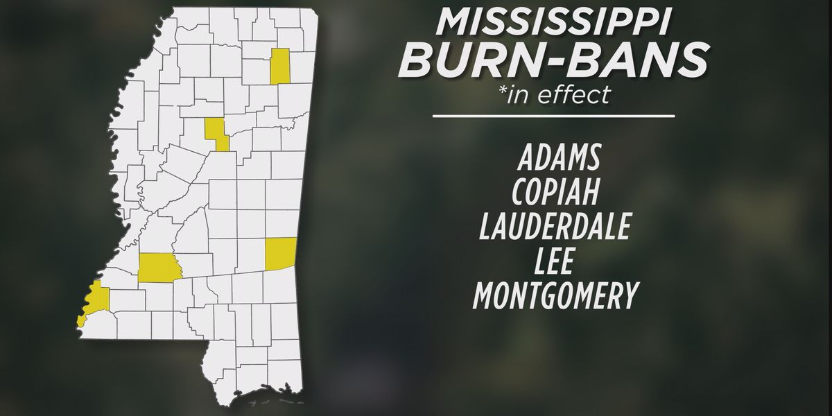 Five Mississippi counties now under a burn ban