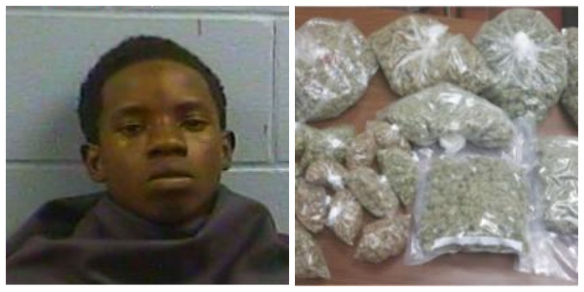 Six pounds of marijuana seized in Vicksburg drug bust, one arrested