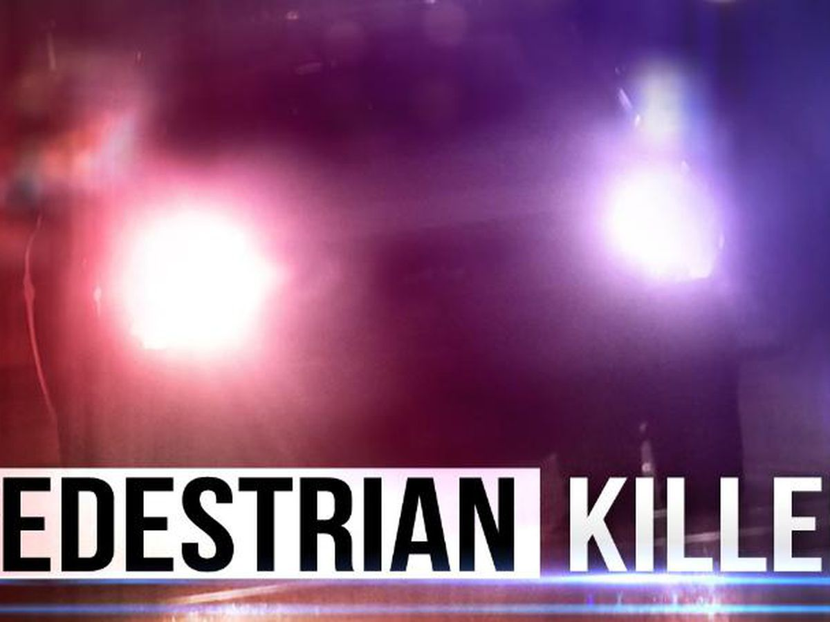Pedestrian killed after being hit by vehicles while walking on I-220 N