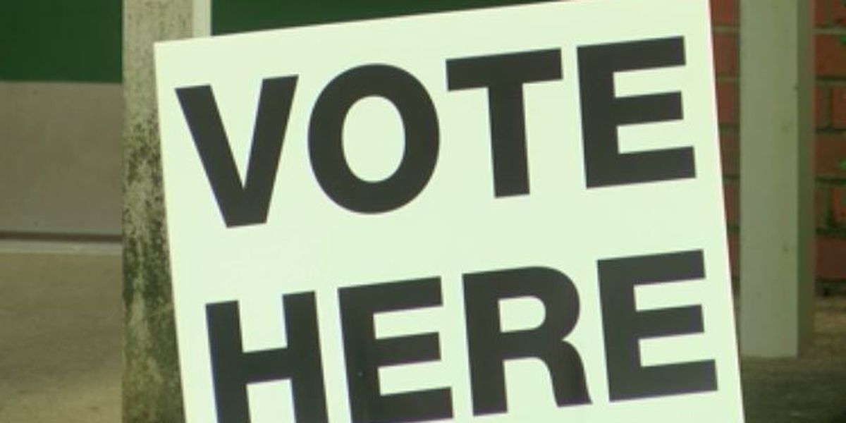 Election Problems: Some voters wait for over an hour to cast ballot at Edwards precinct