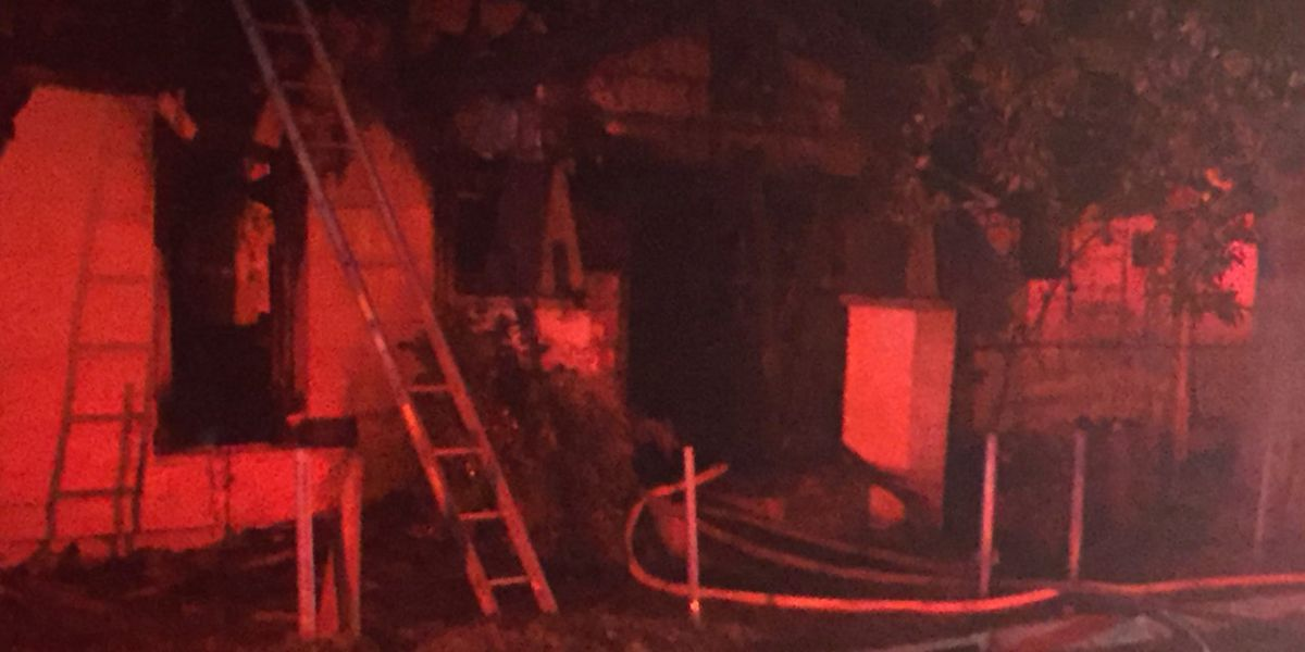 Woman, dog escape house fire on Carnation St. in Jackson