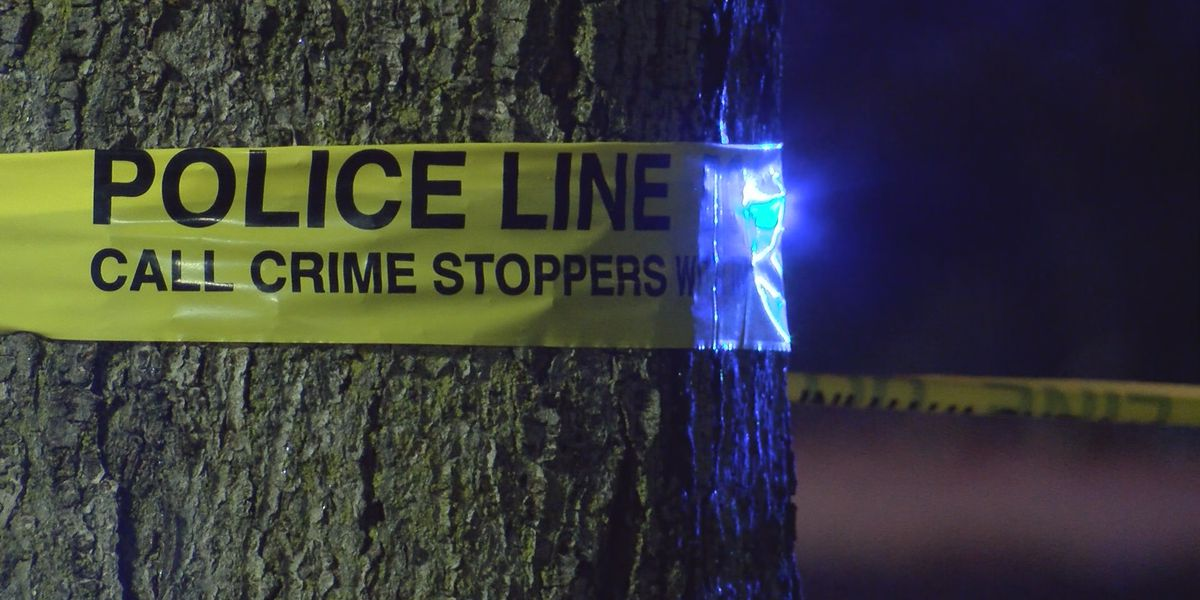 Homicide probe launched after Gulfport police checking crash find 2 men shot to death inside