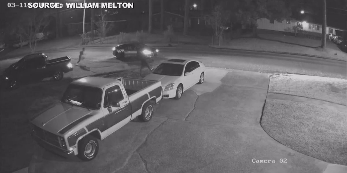 Wanted: Car vandals caught on camera in North Jackson