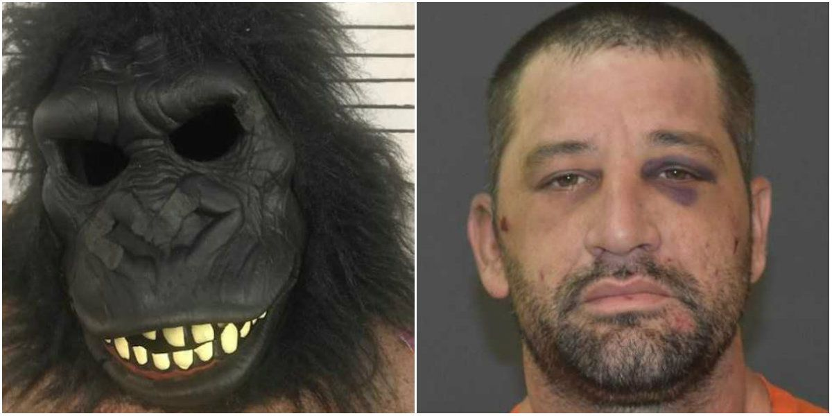 Image result for man in gorilla suit breaks into louisiana home