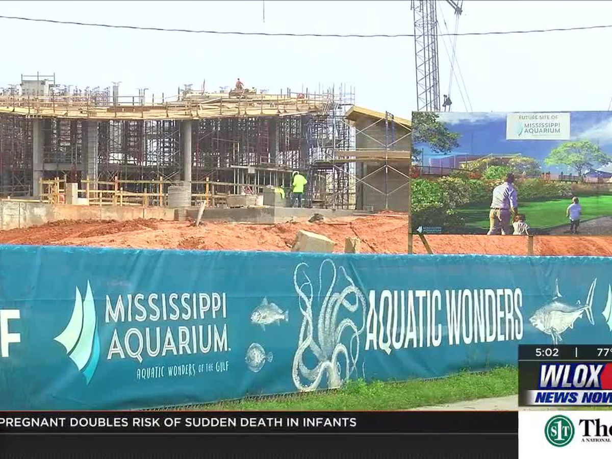 Opening Date Officially Announced For Mississippi Aquarium