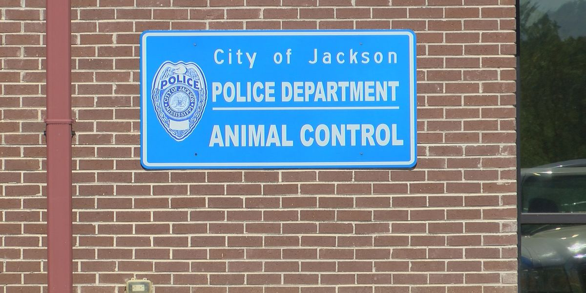 Animal control manager placed on administrative leave