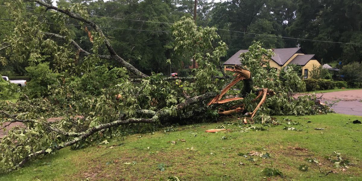 McComb residents begin cleanup from severe storms