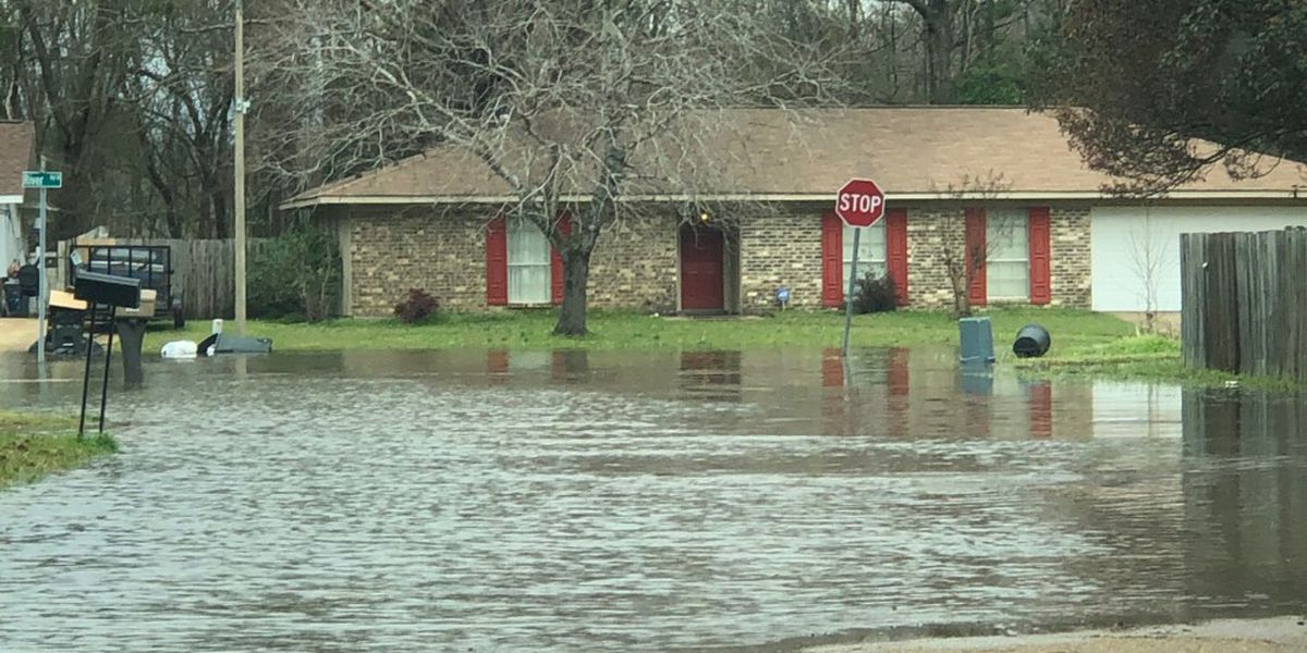 SLIDESHOW: Pearl River Flood of 2020