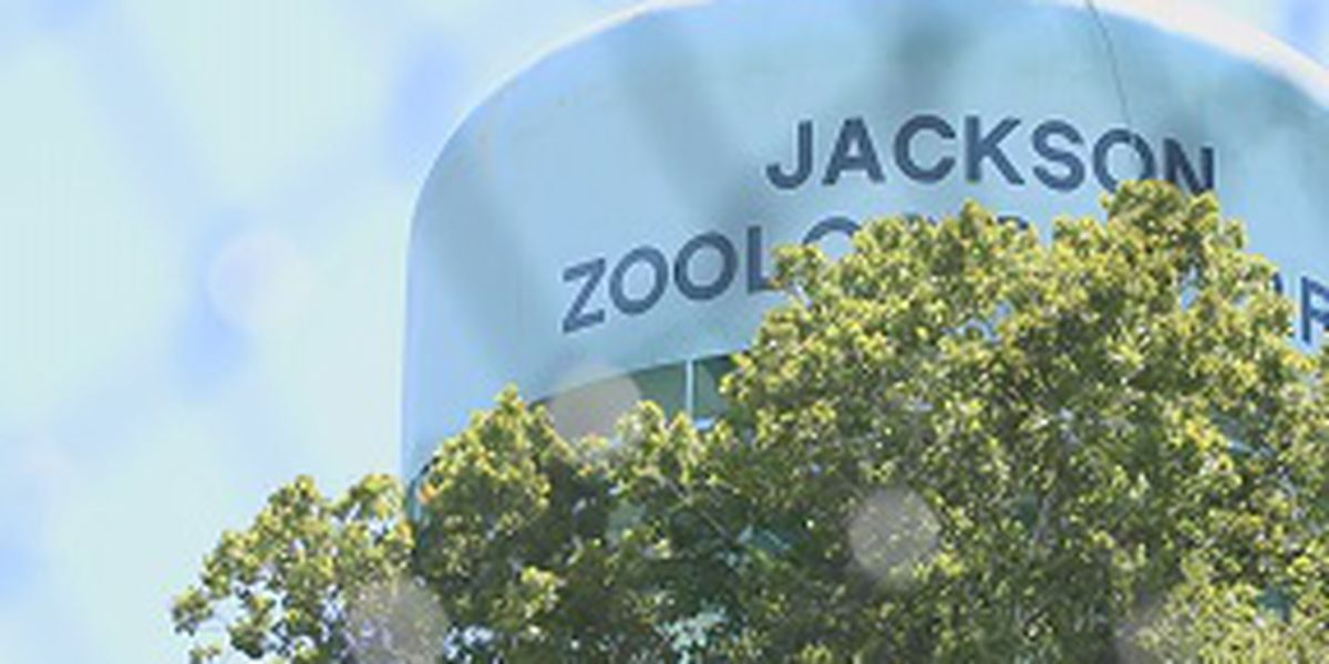 'It was a very tough decision': ZoOceanarium pulls out of talks with Jackson