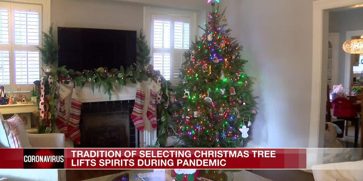 Families pick out Christmas trees to take their minds off pandemic