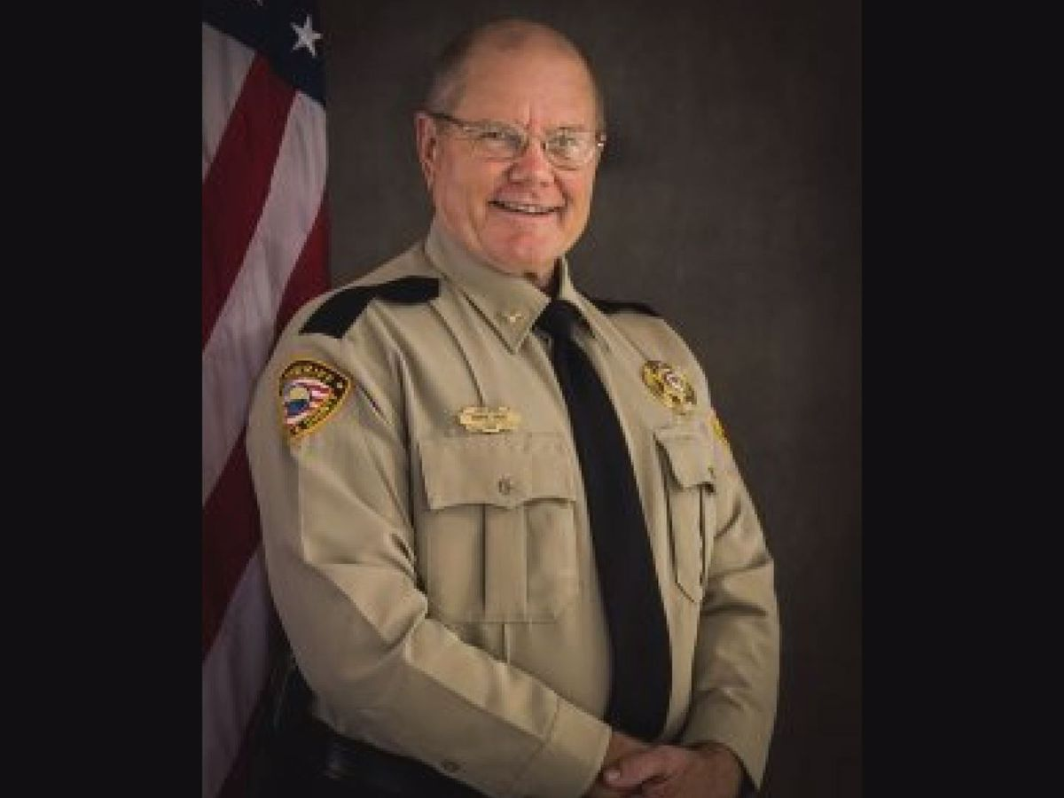 Adams County chief deputy dies following wasp sting