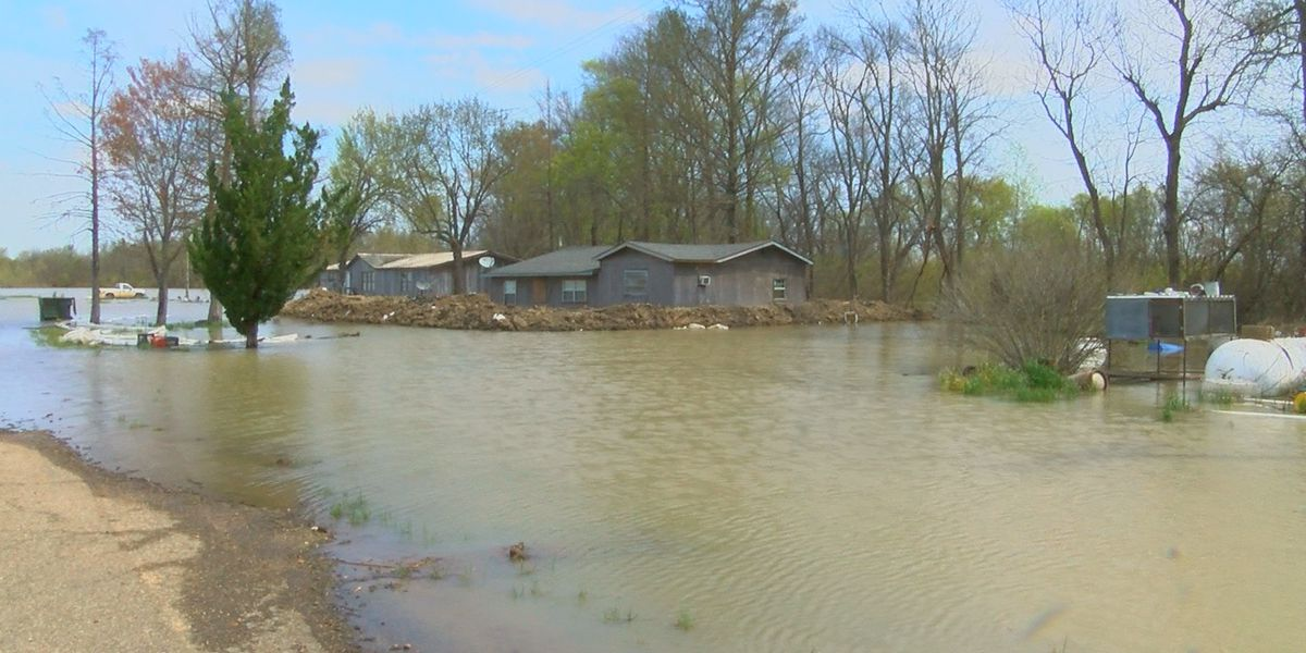 Displaced Sharkey Co. family makes plea to lawmakers in flood fight