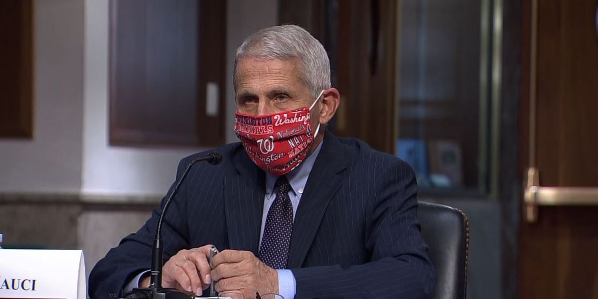 Fauci: US 'going in wrong direction' in coronavirus outbreak