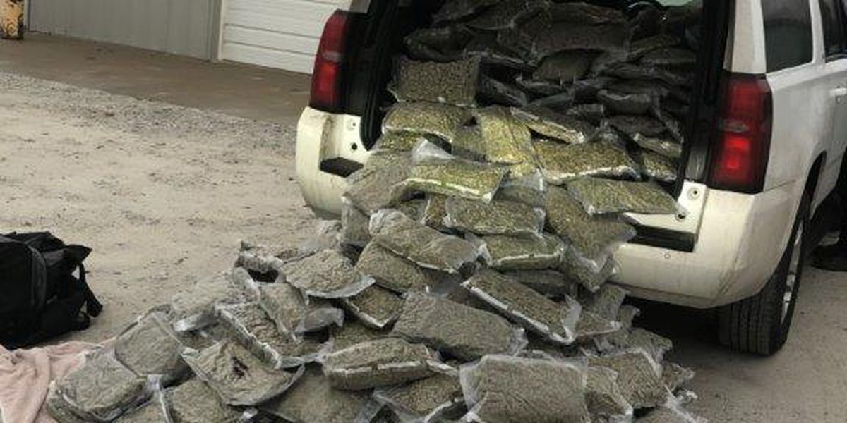 301 pounds of marijuana seized after traffic stop in MO