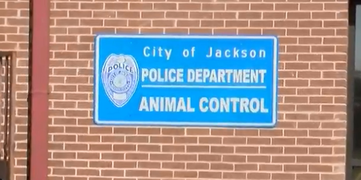 After their dog was killed, a north Jackson family is now taking on animal control
