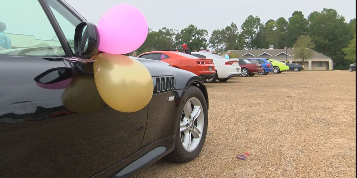 Mississippi riders cruise against breast cancer