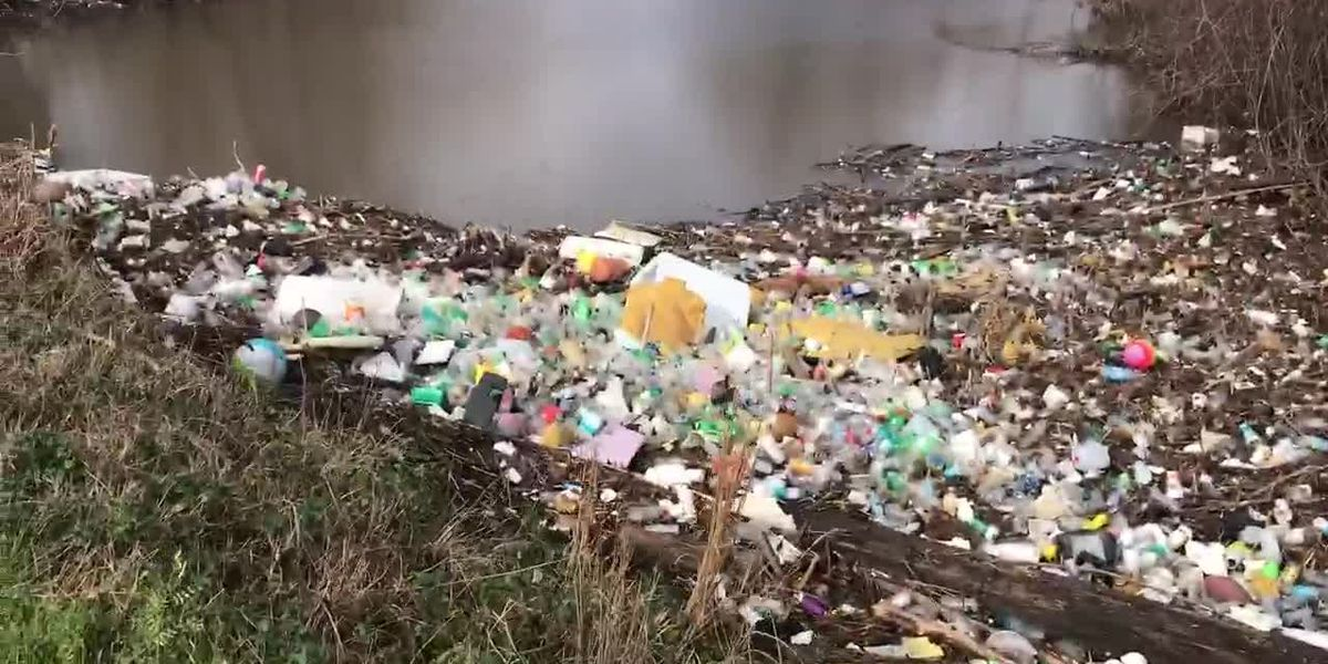 VIDEO: Trash flows into Jackson creek