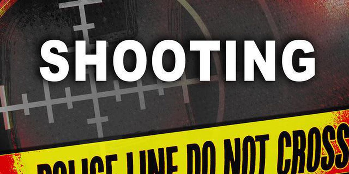 Jackson police investigating two deadly Black Friday shootings