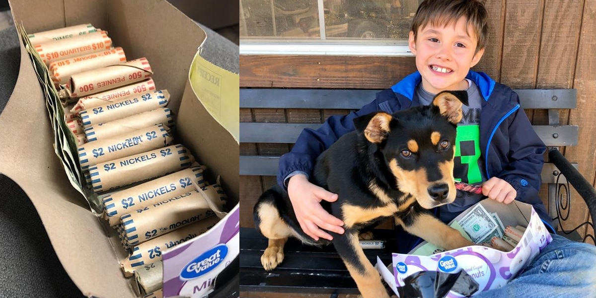 Boy saves up spare change, adopts puppy