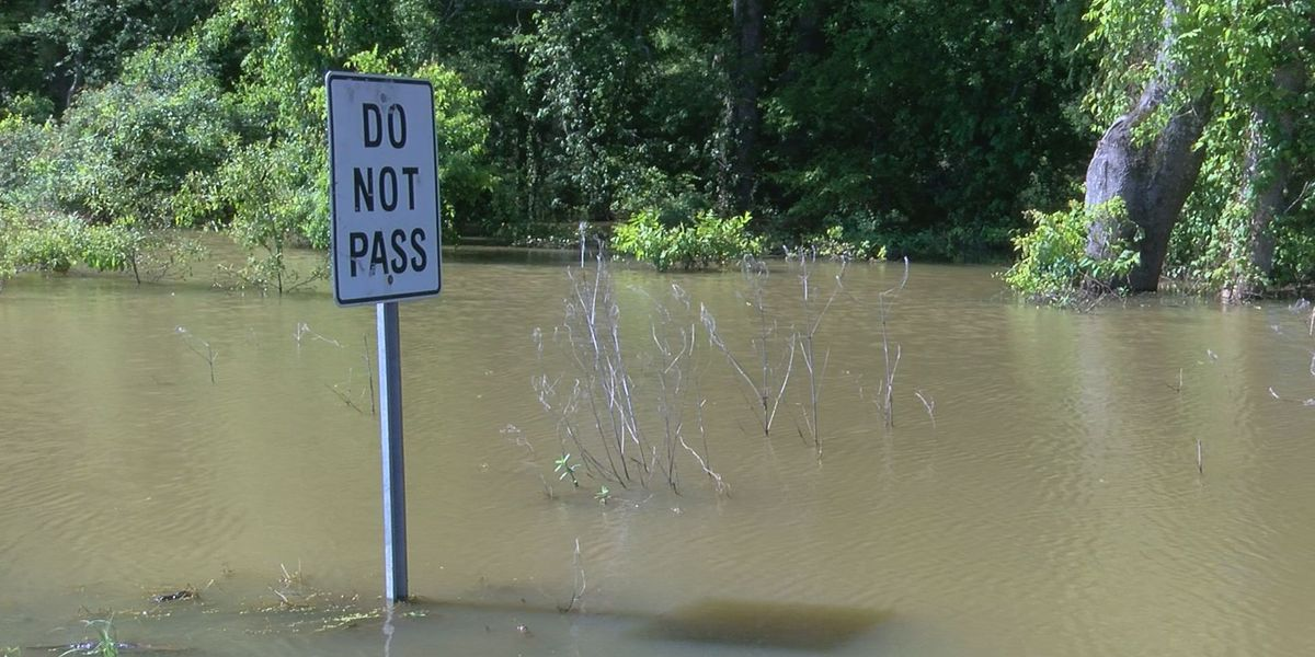Lawmakers hear from Gulf Coast, Delta leaders on flooding impact