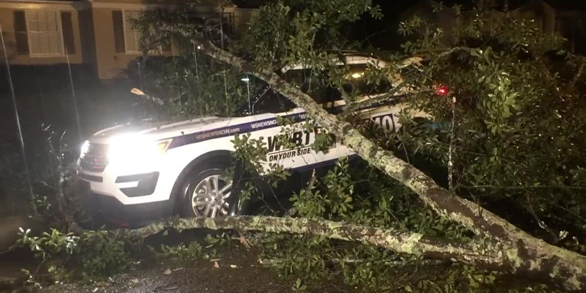 WLBT's 'Stormtracker' damaged after high winds from Hurricane Delta down trees in Natchez