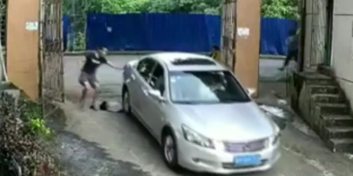 Toddler in China survives being run over by car twice