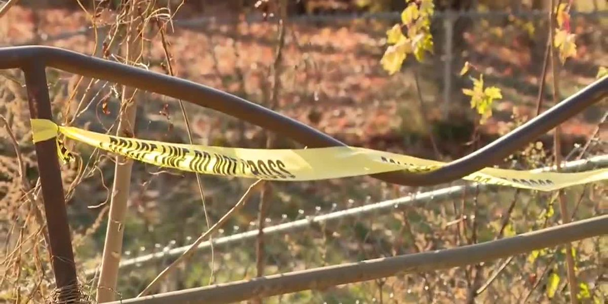 Abandoned infant found dead in frigid cold